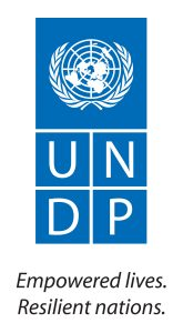 Large UNDP Logo with English Tagline (JPG)