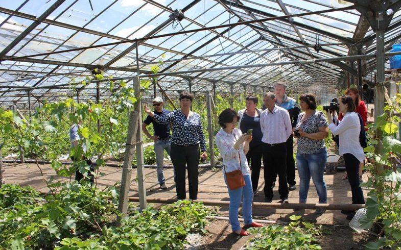 Презентация экспериментального участка в с. Кицканы в рамках проекта экологического сельского хозяйства