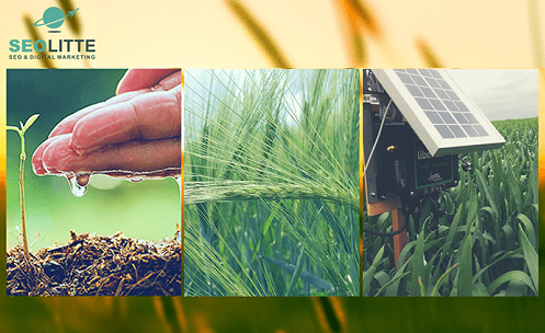 Является ли SEO полезным для сельскохозяйственного сектора?