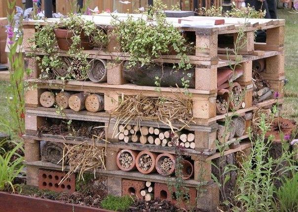Биологическая защита сада-огорода от вредителей
