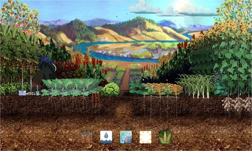Метод Биоинтенсивного земледелия